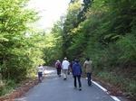 0509 春埜山の大杉 020.jpg